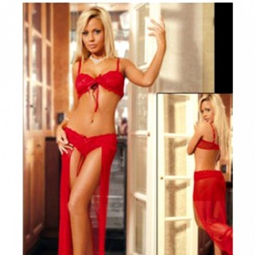 Sexy and erotic 2 piece full figure sexy waist 2700 BBD-022